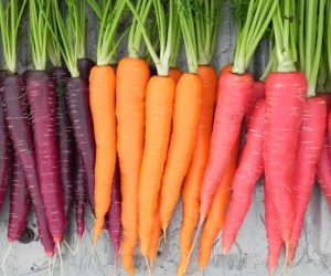Καρότα Baby-Rainbow